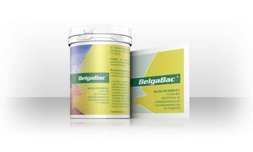 BelgaBac
